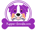 pupperdoodle201-tommy-100px